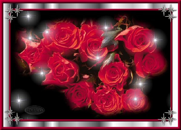 rose31.jpg