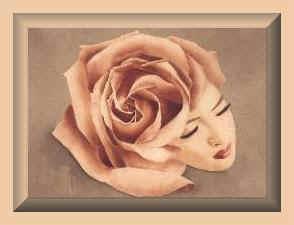 femme.rose1.jpg