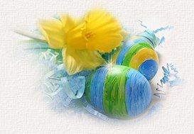 eggswelcomepic1.jpg